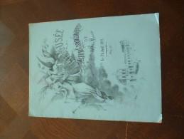 Programme 1891 Illustré Par Dulac Inauguration Du Musée De Cette. Rareté Couverture à Recoller - Programma's