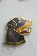Jagd Terrier Club De France - Pin Badge #PLS - Ciudades