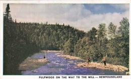 NEWFOUNDLAND - Pulpwood On The Way To The Mill - Holzflösser In Neufundland, Karte Gel.1949 Mit 2 Marken, österr.Zensur - Ohne Zuordnung