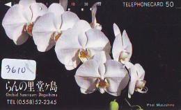 Télécarte Japon * ORCHID * FLEUR (3610) Orchidée Orquídea Orquidée Orchid * Flower Phonecard JAPAN * - Bloemen