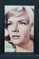 Vintage 1968 Small Calendar - Cinema/ Actors Topic: Actress: Anne Francis - Calendarios