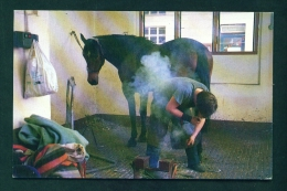 ENGLAND  -  Shoeing A Horse At Bow Police Station In London  Unused Postcard As Scan - Agriculture
