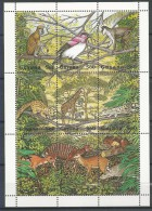 Guyana: Violet-backed Starling (Cinnyricinclus Leucogaster) - Uccelli Canterini Ed Arboricoli