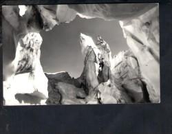 F2485 Fra I Serracchi Della Marmorada - Arrampicata Escalade Climbing - Annullo Felcade 1956 E Targa Turistica - Altre Città