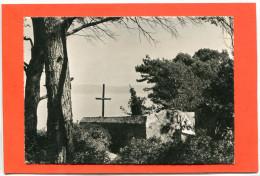 83  .ILE  DE  PORT   -  CROS  , Le  Vieux  Cimetiere  .cpsm  10,5 X 15 - Other Municipalities