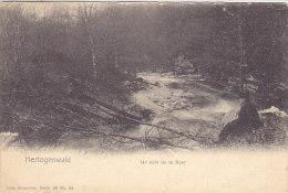 Hertogenwald - Un Coin De La Soor (animée) - Jalhay