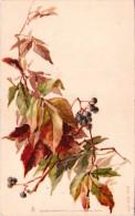 Raphaël TUCK - Feuilles D'automne - Tuck, Raphael