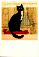 CHAT  / LOT  1 - Katten