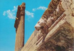 LIBANO - LEBANON - LIBAN - Baalbeck - Details of cornice of Jupiter Temple - D�tailsdu coniche du Temple de Jupiter