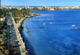Tripoli - libya - adrian pelt street - 11689 - formato grande non viaggiata