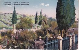 PC Jerusalem - Garden Of Gethsémani (9618) - Israel