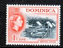 Dominica  143    *   COCOA - Dominica (...-1978)