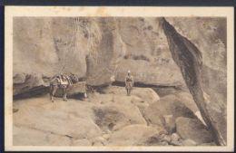 WC488 TRA LE PARETI ROCCIOSE DEL TORRENTE TONQUA - Erythrée