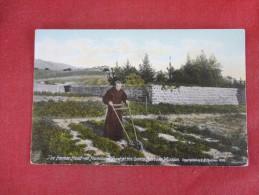 California> Santa Barbara  Farmer Priest Franciscan Friar Mission   ref 1575