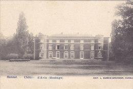 Hannut - Château D'Avin (Hesbaye) (Edit. L. Dubois-Graindor, Précurseur) - Hannut