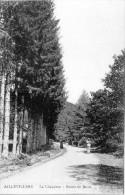 AILLEVILLERS  Haute Saone  70  Route De Bains   -P- - Francia
