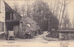 Diegem - Paysage - Diegem