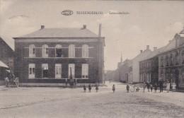 Tessenderlo - Gemeentehuis - Tessenderlo
