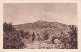 PC Haifa - Veduta Del Sacrificio Di Elia Dal Lato Di Esfia (9631) - Israel