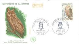 France Cover 1972: FAUNA Birds: Owls, Eulen, Hiboux Cancellation; The Eurasian Eagle-owl (Bubo Bubo) - Gufi E Civette