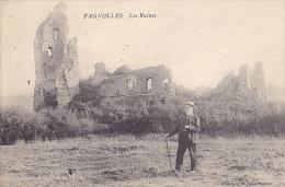 Fagnolles - Les Ruines (animée) - Philippeville
