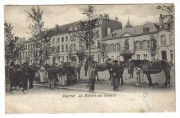 Tournai Le Marché Aux Chevaux - Tournai