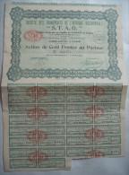 ACTION: SOCIETE DES TRANSPORTS D'AFRIQUE OCCIDENTALE...1927... - Actions & Titres