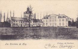 Les Environs De Huy - Château De Couthin - Héron