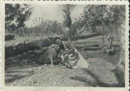 410Stu   Photo Tchad Djibouti Une Femme Avec Un Guepard Et Une Gazelle Dans Le Jardin D´Ambouli - Ciad