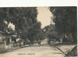 Rabelais Grande Rue Coll. Veuve Nivouliez - Algérie