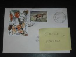 LETTRE ROUMANIE ROMANIA ROMANA AVEC YT 4183 4184 Et 4154 - PREHISTOIRE DINOSAURE - CHAMPIGNON MUSHROOM - - Covers & Documents