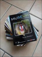 Lot De 200 CP Publicitaires Tous Thèmes - 100 - 499 Cartes
