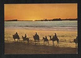 Pakistan Picture Postcard Sunset Over Karachi Beach  View Card - Pakistan