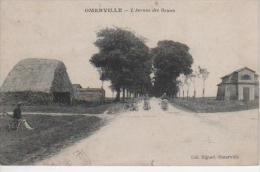 OMERVILLE - L' Avenue Des Ormes - Altri Comuni