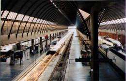Séville - Gare Santa Justa - Une Rame AVE - 1998 - Trains