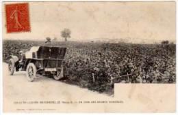 St Julien Beychevelle - Un Coin Des Grands Vignobles (édition Guillier) - France