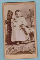 Photo C D V  Enfant  ,jouet Cheval ( Photographie Edouard Chassin  Loire - Inf  ) - Antiche (ante 1900)