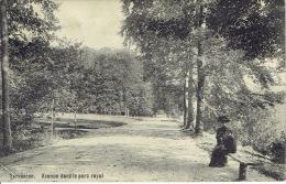 TERVUEREN - Avenue Dans Le Parc Royal - Tervuren