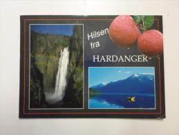 Norge Norway - Hilsen Fra Hardanger   D119736 - Norway