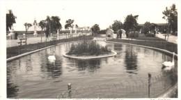 POSTAL   17.-   LUGO  -GALICIA  - PARQUE ROSALIA DE CASTRO  - CANAL    ( EDIC. ARRIBAS ) - Lugo