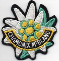 Très Bel écusson De CHAMONIX-MT BLANC, Edelweiss  -8cms- ´(suc15) - Patches