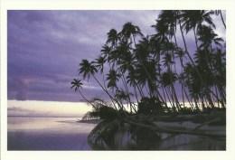 Antilles - Coucher De Soleil - Controluce