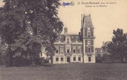 St Denis-Bovesse - Château De La Bruyère - La Bruyère