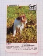 Kitty Minou Cat Chat Katze / NIVEA Cream Crème / Playing Card - Tierbabies, Animals Baby Bébé, Kitty Minou Cat - Playing Cards (classic)
