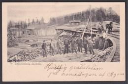 Sweden. Sågverkskolning I Sandviken - Training Sawmill - Zweden