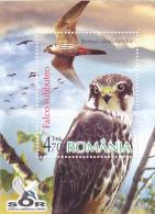 HAWK, BLOCK MINT, 2007, ROMANIA - Hiboux & Chouettes