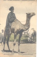 CHAMELIER SENEGALAIS CPA FORTIER NR. 1066 VOYAGEE 1915 COLORISEE - Senegal