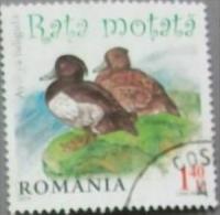Romania 2014 Ducks 1v Used - Non Classificati