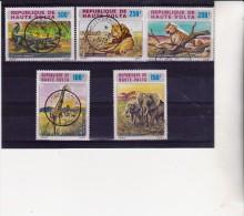 HAUTE - VOLTA - POSTE AERIENNE N° 140 A 144 -SERIE ANIMAUX SAUVAGES- - Opper-Volta (1958-1984)