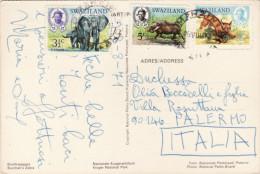 SWAZILAND   /  ITALIA   - Card _ Cartolina - Swaziland (1968-...)